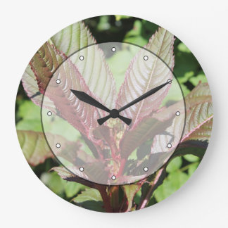 Red and Green Leafy Plant. Large Clock