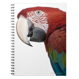 Red-and-green Macaw - Ara chloropterus Spiral Notebook