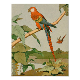 Red-and-Green Macaw Jungle Parrot Poster