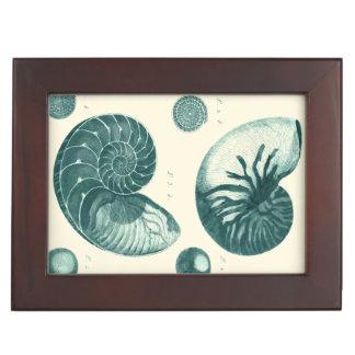 Red and Green Seashell Art Keepsake Box