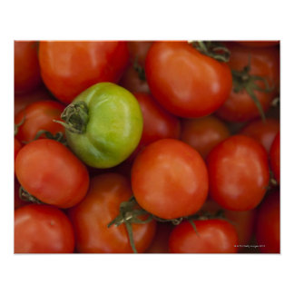 Red and Green Tomatoes with a for Sale Sign