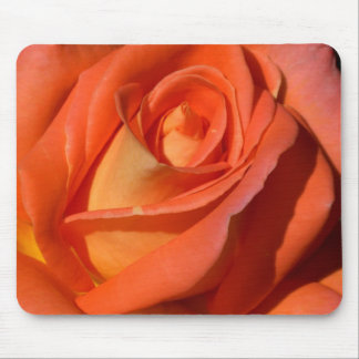 Red And Orange Rose Mouse Pads
