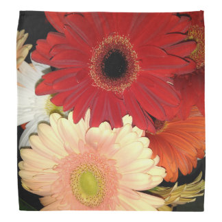Red and Peach Gerbera Daisy Bandana