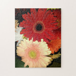 Red and Peach Gerbera Daisy Jigsaw Puzzle