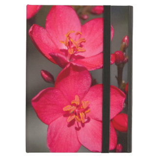 Red and Pink Tropical Fiji Flowers iPad Air Cover