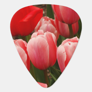 Red and Pink Tulips Guitar Pick