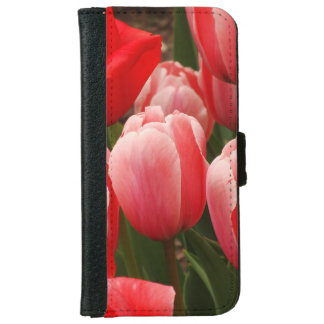 Red and Pink Tulips iPhone 6 Wallet Case