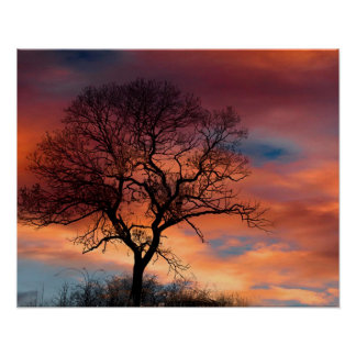 Red and Purple Sky and Mystical Tree Poster