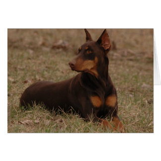 Red and Rust Doberman Greeting Card