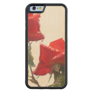 Red And Wet Flowers Maple iPhone 6 Bumper Case