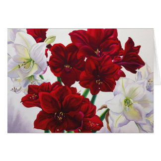 Red and White Amaryllis 2008 Card