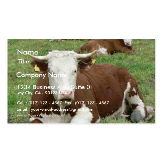 Red And White Cow On Green Grass Business Card Template