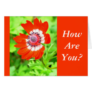 RED AND WHITE FLOWER/ HOW ARE YOU? (CUSTOMIZABLE) NOTE CARD