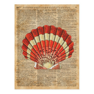 Red and White Ocean Sea Shell Dictionary Book Page Postcard