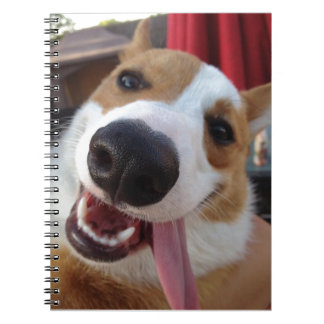 Red and White Pembroke Welsh Corgi Notebook