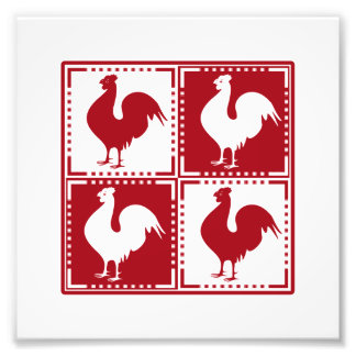 Red and White Rooster Chicken Lovers Photograph