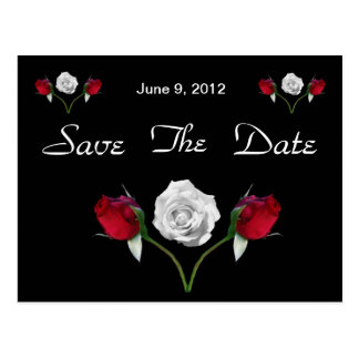 Red and White Roses save the date postcard