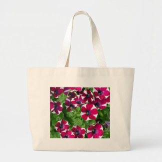 Red and white striped petunias bag