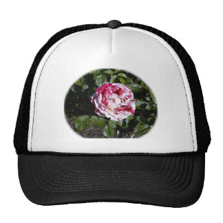 Red and White Striped Rose Trucker Hat
