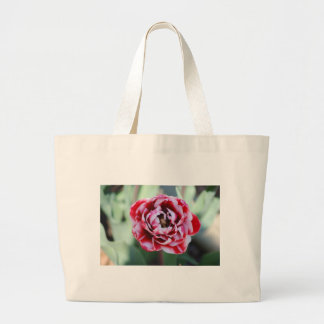 red and white tulip bag