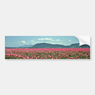 Red And White Tulip Field flowers Bumper Sticker