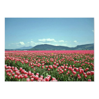 Red And White Tulip Field flowers 13 Cm X 18 Cm Invitation Card