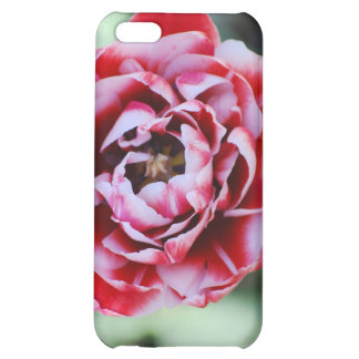 red and white tulip iPhone 5C cover