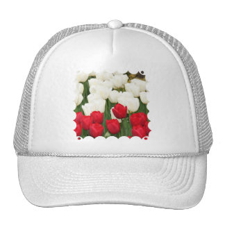 Red and White Tulips Baseball Hat