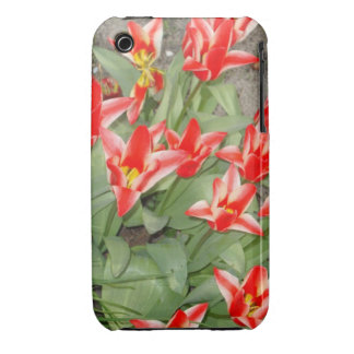 red and white tulips Case-Mate iPhone 3 cases