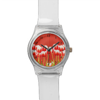 Red and white tulips watch