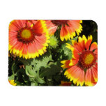 Red and Yellow Flowers  Premium Magnet Rectangle Magnet