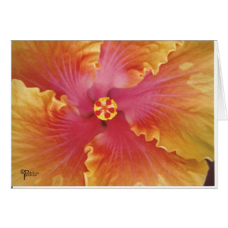 Red and Yellow Hibiscus Card