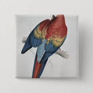 Red and Yellow Macaw 15 Cm Square Badge