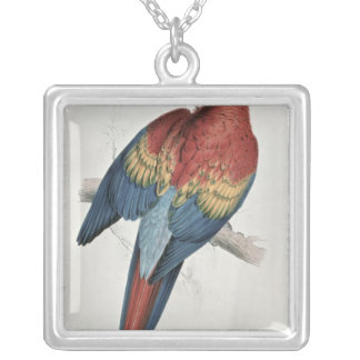 Red and Yellow Macaw Silver Plated Necklace
