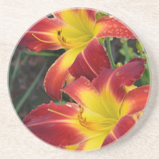 Red and yellow tropical lilies coasters
