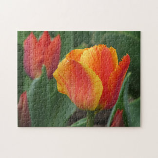 Red and Yellow Tulip Jigsaw Puzzle