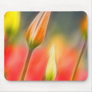 Red and Yellow Tulip Sketch Mouse Pad