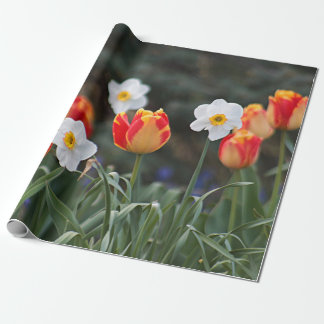 Red and yellow tulips and jonquils wrapping paper