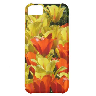 Red and Yellow Tulips iPhone 5C Covers
