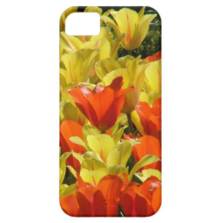 Red and Yellow Tulips iPhone 5 Case