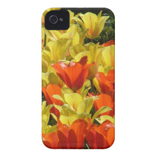 Red and Yellow Tulips iPhone 4 Cover