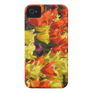 Red and Yellow Tulips iPhone 4 Covers