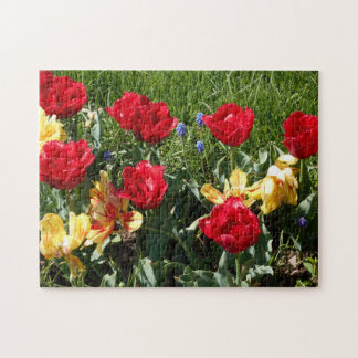 Red And Yellow Tulips Jigsaw Puzzle