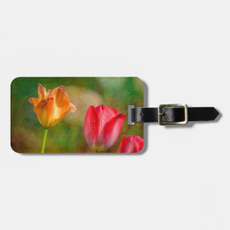 Red and yellow tulips on textured background luggage tag