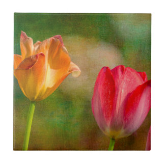 Red and yellow tulips on textured background tile