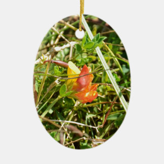 Red and Yellow Wild Flower Christmas Ornament