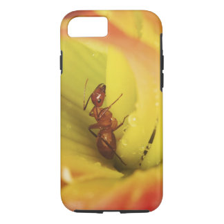 Red Ant, Formica spp. iPhone 7 Case