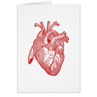 Red Antique Anatomical Heart Greeting Card