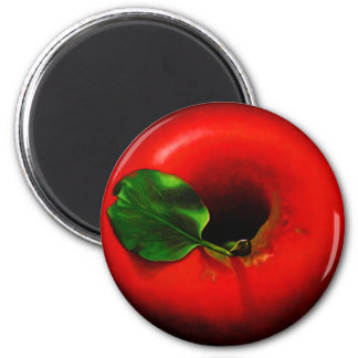 Red Apple Magnets