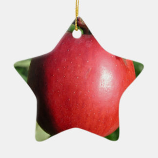 Red Apple with a Leaf Ceramic Star Decoration